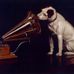 dog-listening-to-music
