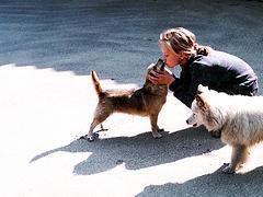 Dog Kiss (Photo credit: Vaughan)