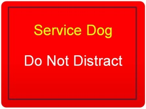 Service Dog-Do not distract