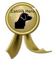 Dog Hero Award