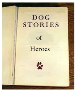 Dog Stories Book