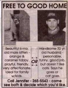 cat vs husband-2
