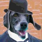Mr. Carson, Butler