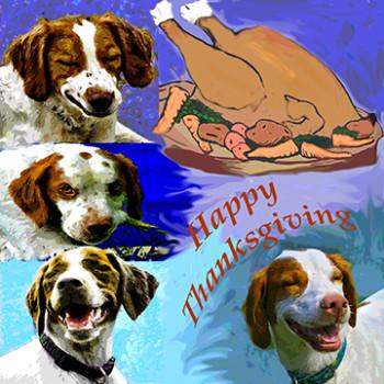 sml happy thanksgiving