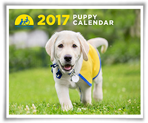 Canine Companions for Independence calendar